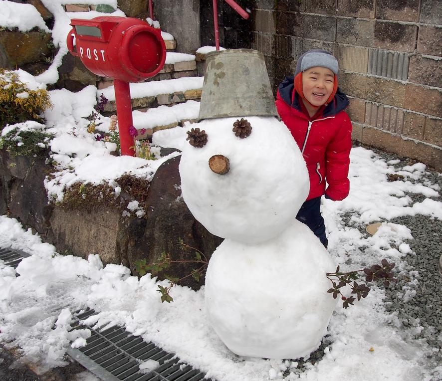 2017年雪